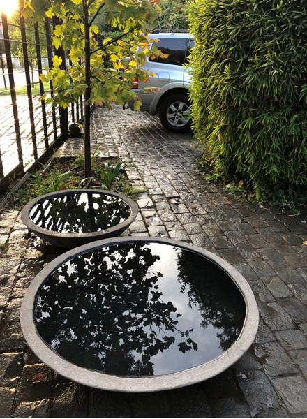 Platos de cemento para plantas y agua - fuentes de agua